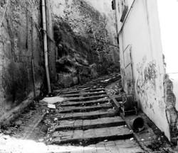Liuami lungo le scale dell'ex convento