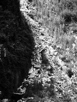 Una immensa discarica abusiva che scivola tra gli alberi dell'area verde protetta