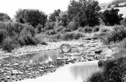 Fiumi inquinati nel beneventano