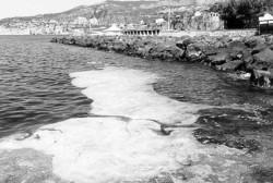 Schiuma nel porto di Sorrento